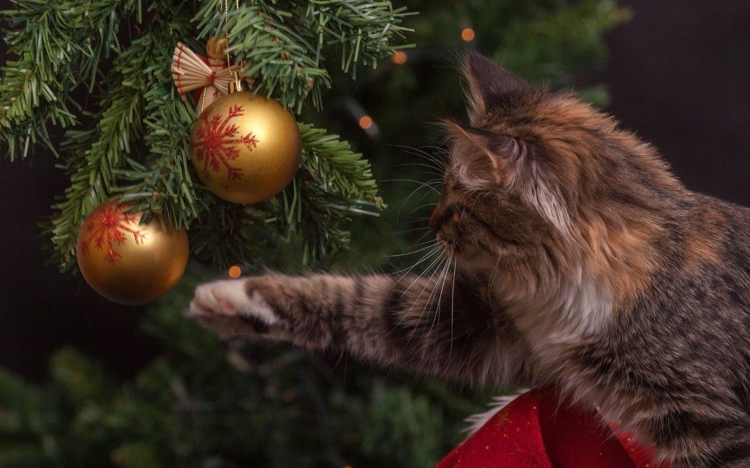 Вітаємо з Новим Роком і Різдвом Христовим!